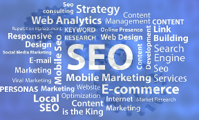 tampa seo services